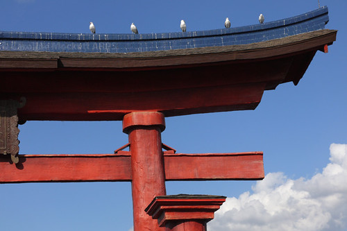 Torii Seagulls | by cazphoto.co.uk