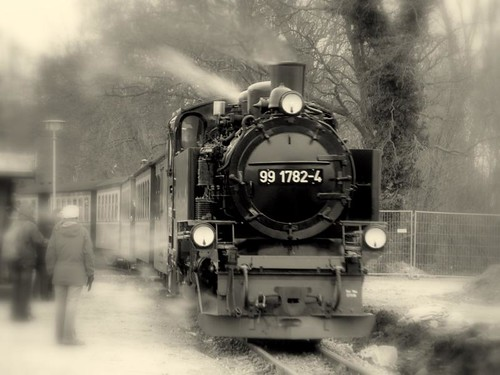 At full steam into a new year!   Explore 460 Thank you all! | by fossibear