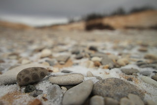 petoskey stone in snow | by northernlightphotograph