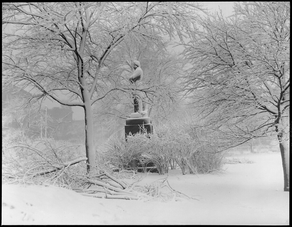 charles sumner u0027s statue covered with snow public garden flickr