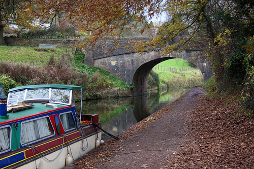 canal | by Amber Parkin
