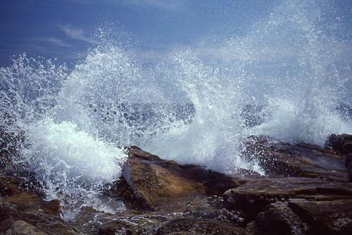 Splash! Maine Coast | by esywlkr