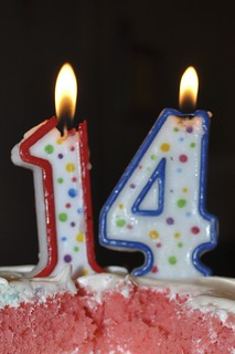 14 candles on birthday cake | by Scott McLeod