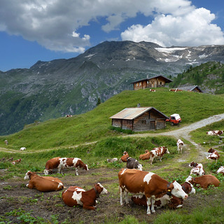 Austrian mountain farm at the foot of the Hintertux Glacier | by B℮n