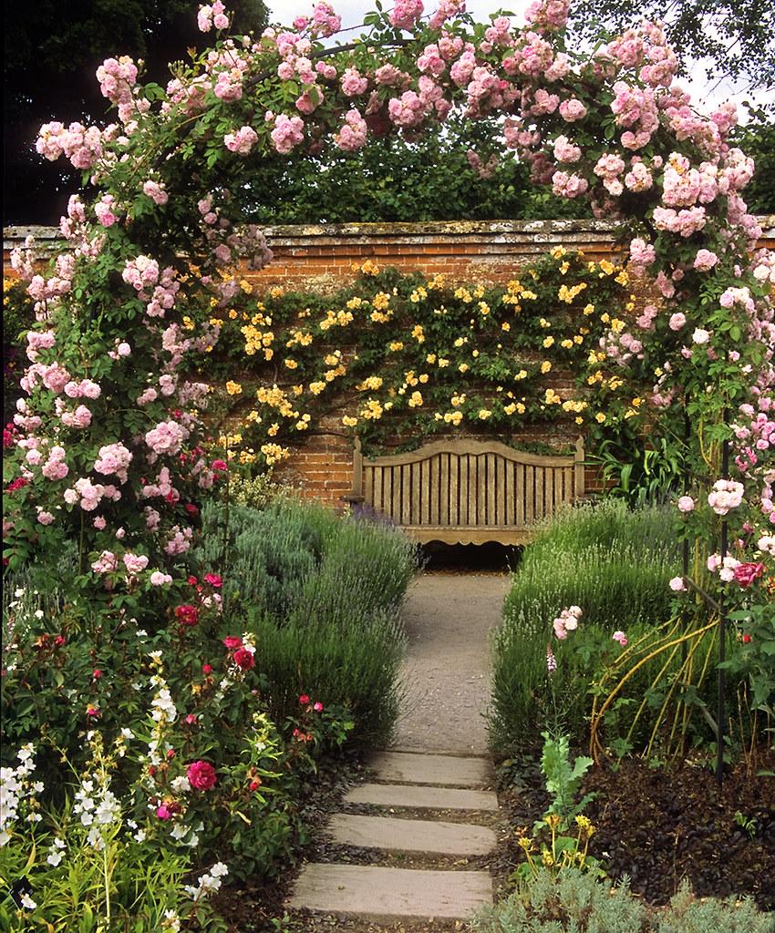 Mottisfont Abbey Rose Gardens, Hampshire, UK | The best ro… | Flickr
