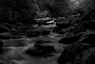 creek in the smokies bw | by sidturner