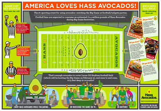 Hass Avocado Super Bowl infographic | by Chris Rooney Illustration/Design