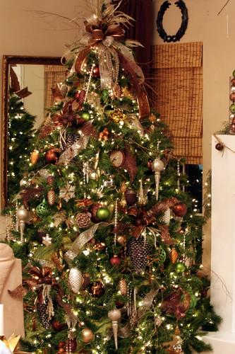 Christmas Tree Company