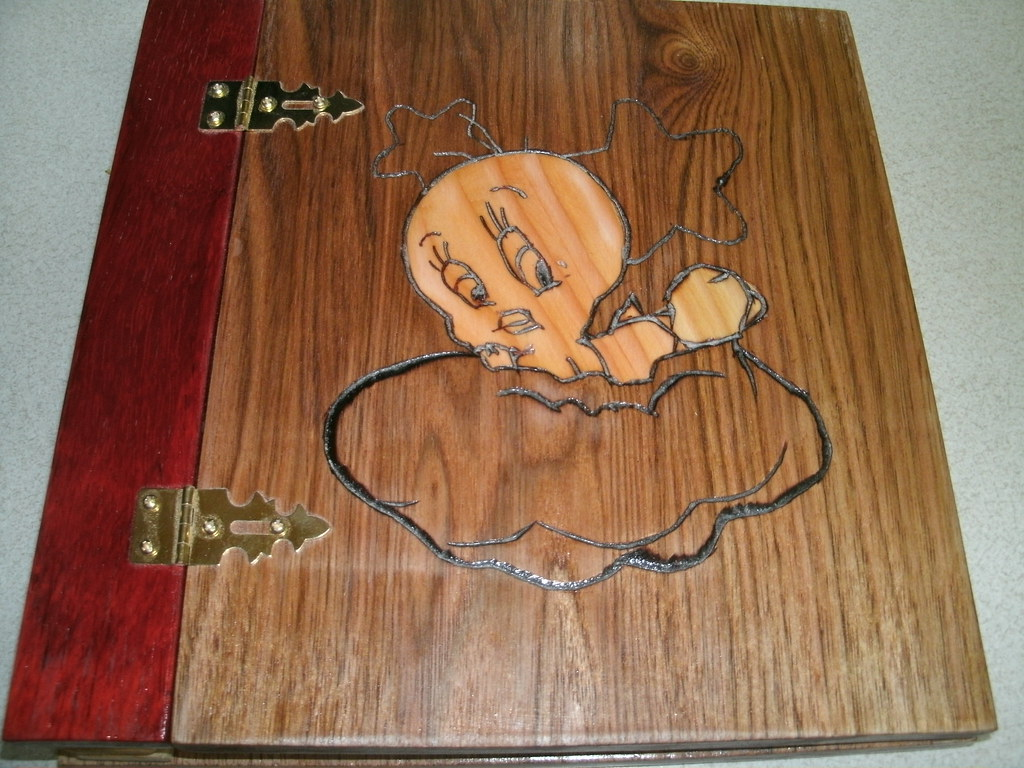 Wood Scrapbook Album Tweety Bird Ge Digital Camera Bill Custer