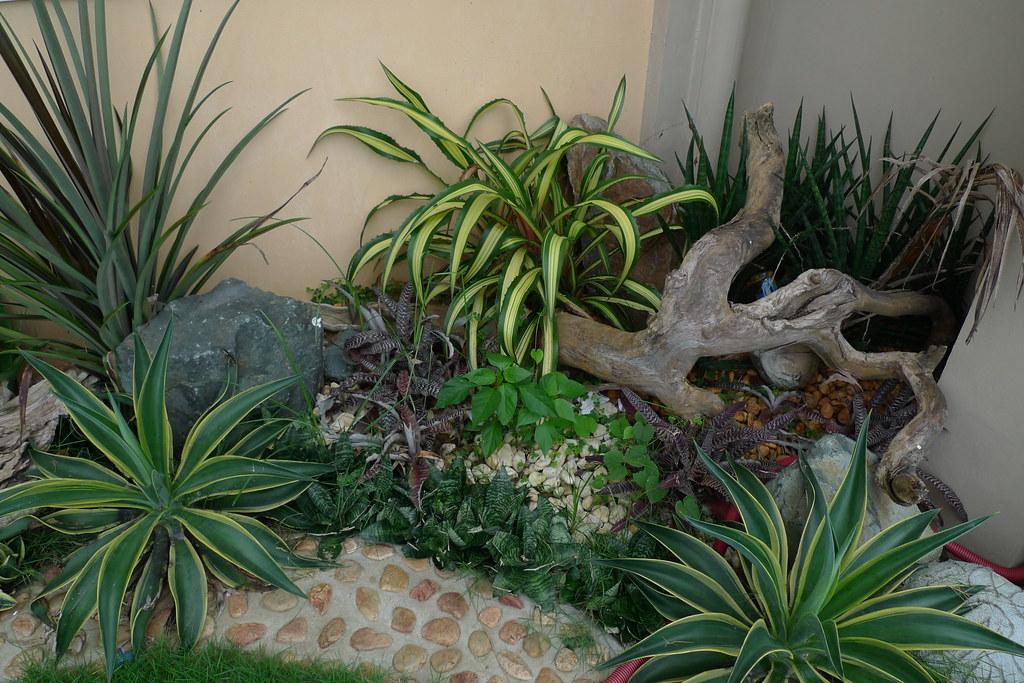 Garden Design Tablas Island Romblon Philippines Flickr