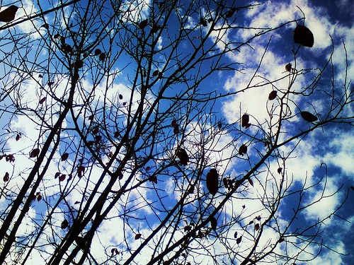 my sky, yesterday | by ~evi's...~