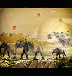 The Elephant Walk (in green boots) | by hana1080 away