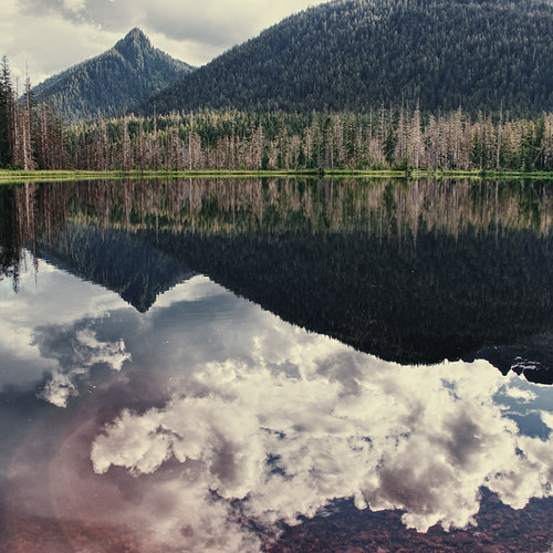Above and Below | by Christopher DiNottia