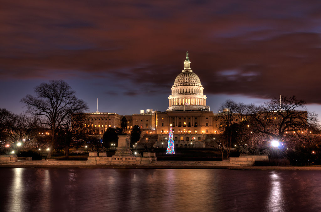 nations capitol building with a christmas tree at night washington dc usa by - Christmas In Dc