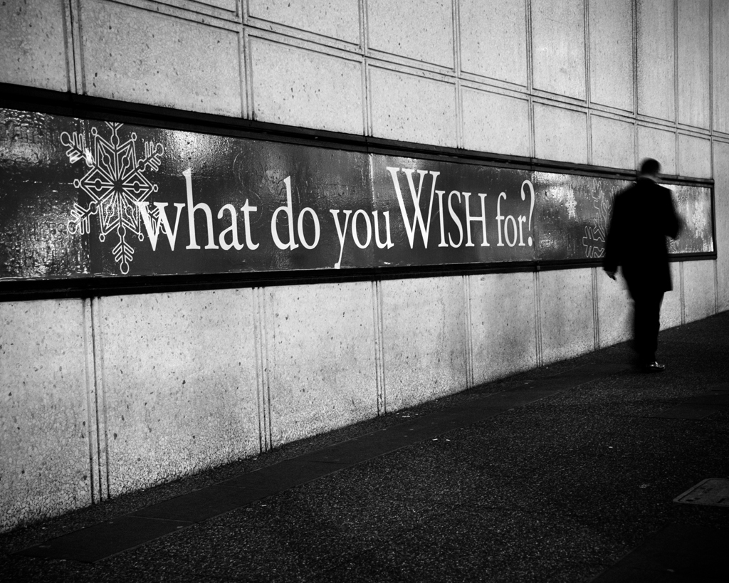What can you wish for 91