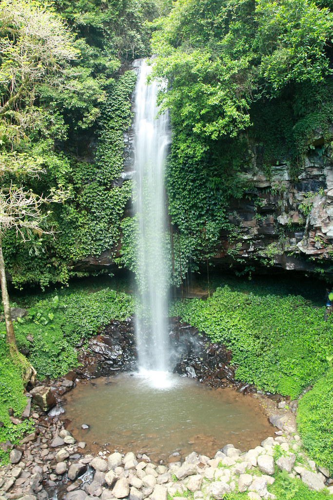 Crystal falls, Dorrigo National Park