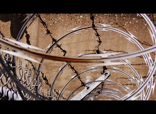 Razor wire~{STAY OUT} | by Madeline.D.K.