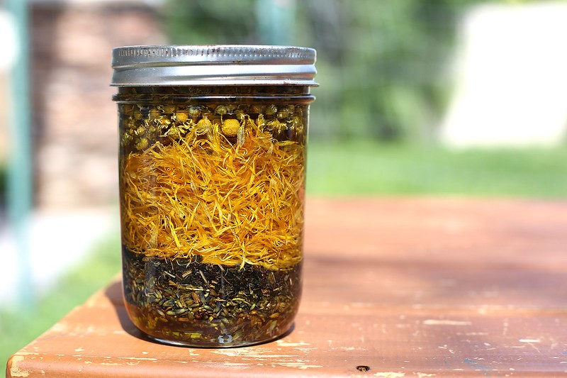 herbal solar oil infusion with lavender, chickweed, plantain, caldendula and chamomile