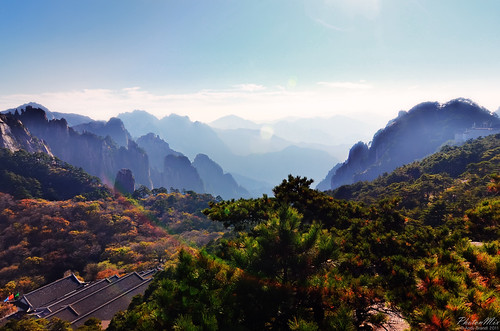 Sea of Pine Trees (Yellow Mountain, Anhui Province, China) | by Andy Brandl (PhotonMix)