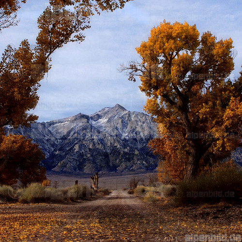 Mount Williamson from Manzanar | by alpenbild.de