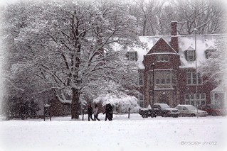 FIRST SNOW AT AQUINAS COLLEGE 2012 | by bitsorf: Thank you 1,500,000 times