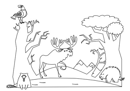 forest animals coloring book pg 6 this is some free stuff flickr. Black Bedroom Furniture Sets. Home Design Ideas