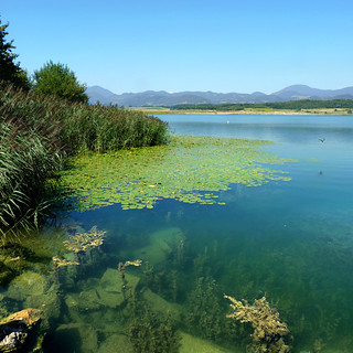 Velenje lake - Jewels of nature | by B℮n