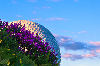 SpaceShip Earth Over the Flowers in the Late Afternoon. | by tltichy