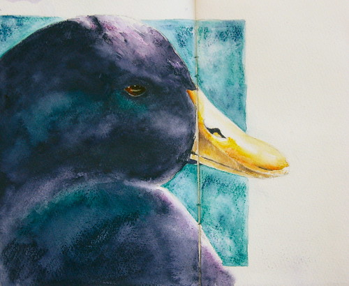 Duck . . . as dude :-)  The Sketchbook Project | by bettyfromtexas