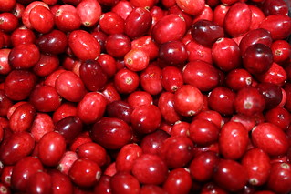 Cranberry sauce recipe | by Célèste of Fashion is Evolution