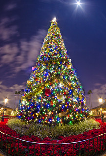 Epcot's Christmas Tree | by Tom.Bricker