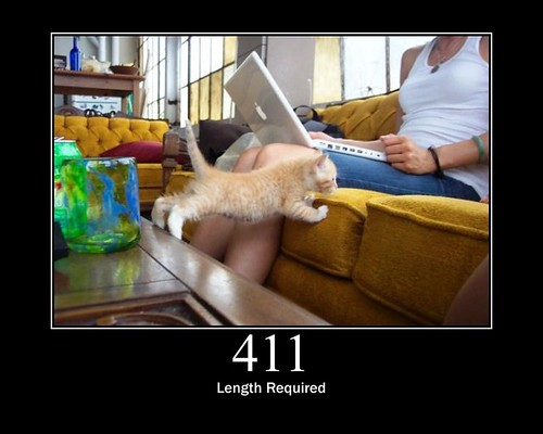 411 - Length Required | by GirlieMac