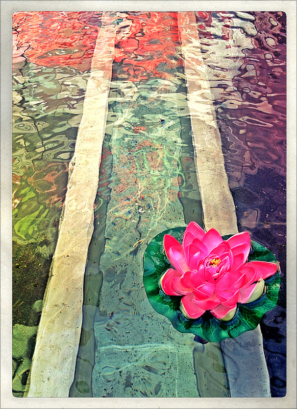 Lotus Flower In Bitexco Water Feature Via Phototoaster Stephen