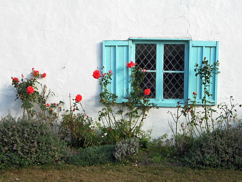 The Blue Shuttered Window | by Louise and Colin