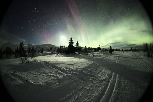 Trysil Aurora Borealis | Trysil is a winter wonderland for ...