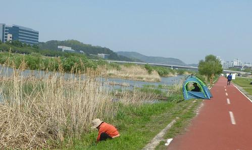 C16-Daejeon-Riviere-Parc (4)