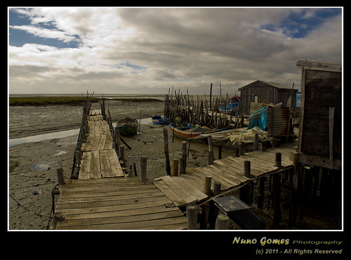 Carrasqueira 044 | by Nuno-Gomes (Enough is enough)