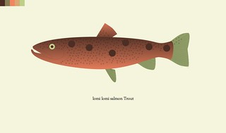 trout-35-lomi lomi salmon | by hebchop