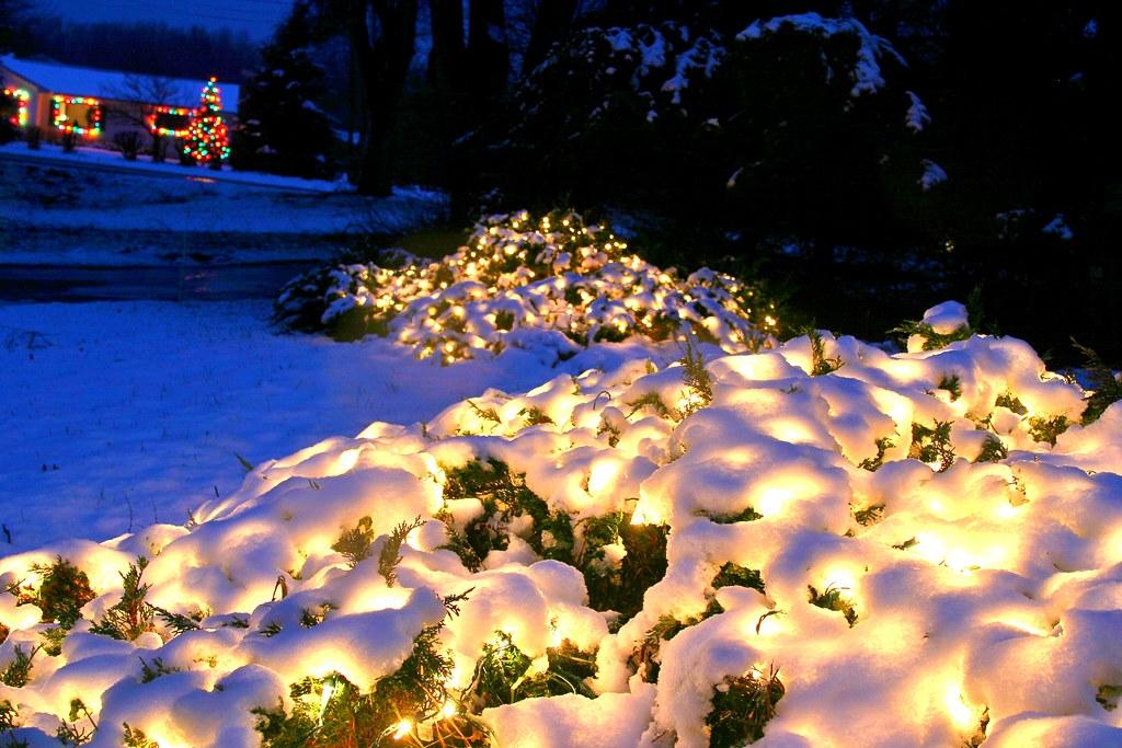 Reindeer beagles and snow cowboys christmas lights in salisbury