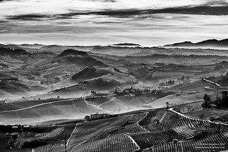 Langhe | by Teo's photo