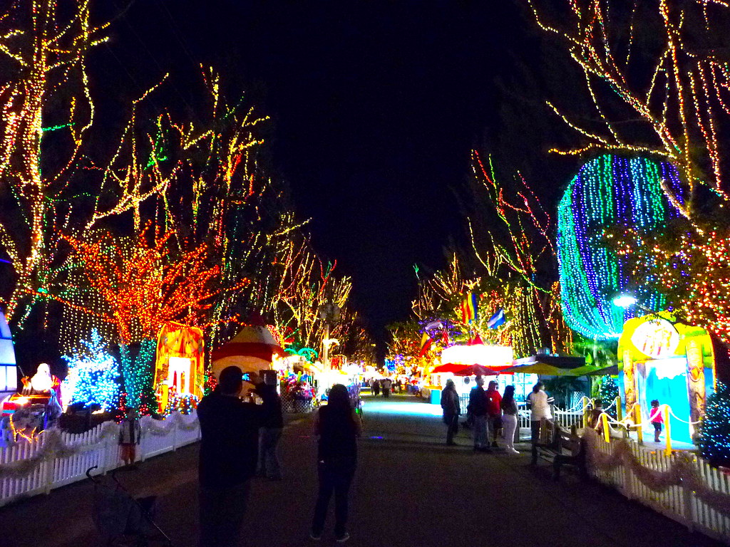 santas enchanted forest by tranquilometro santas enchanted forest by tranquilometro - Enchanted Forest Christmas Lights