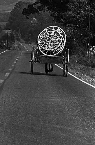 AMISH BUGGY 1975 | by t. m. angelo _ akron,ohio
