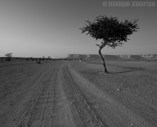 Alone B&W | by Hesham Alsufian | 