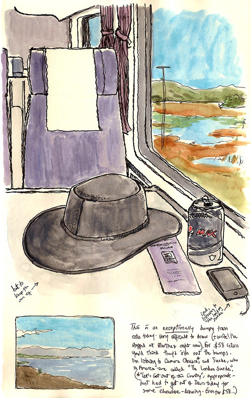 on the amtrak (with my hat)