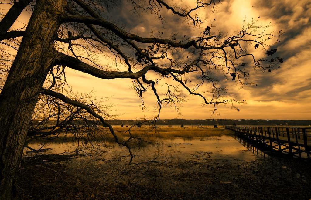 Risultati immagini per golden landscape italy