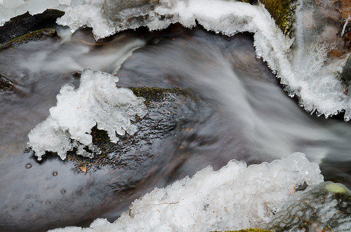 Winter Stream | by barkingduck99