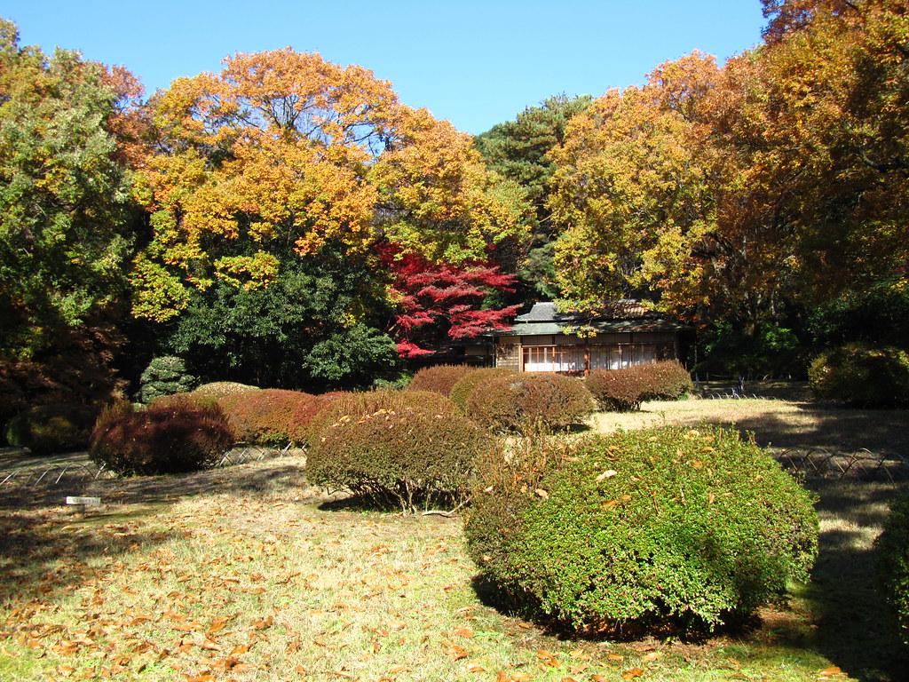 Meiji Shrine Inner Garden   The Meiji Shrine Inner Garden or…   Flickr