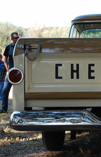 Tail End of Chevy Truck | by Alli Tray
