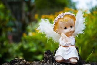 Ребенок-ангел