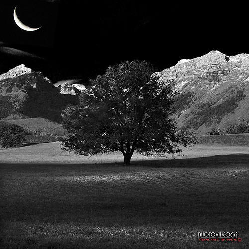 MOONLIGHT | by Giancarlo Giupponi  Trentino